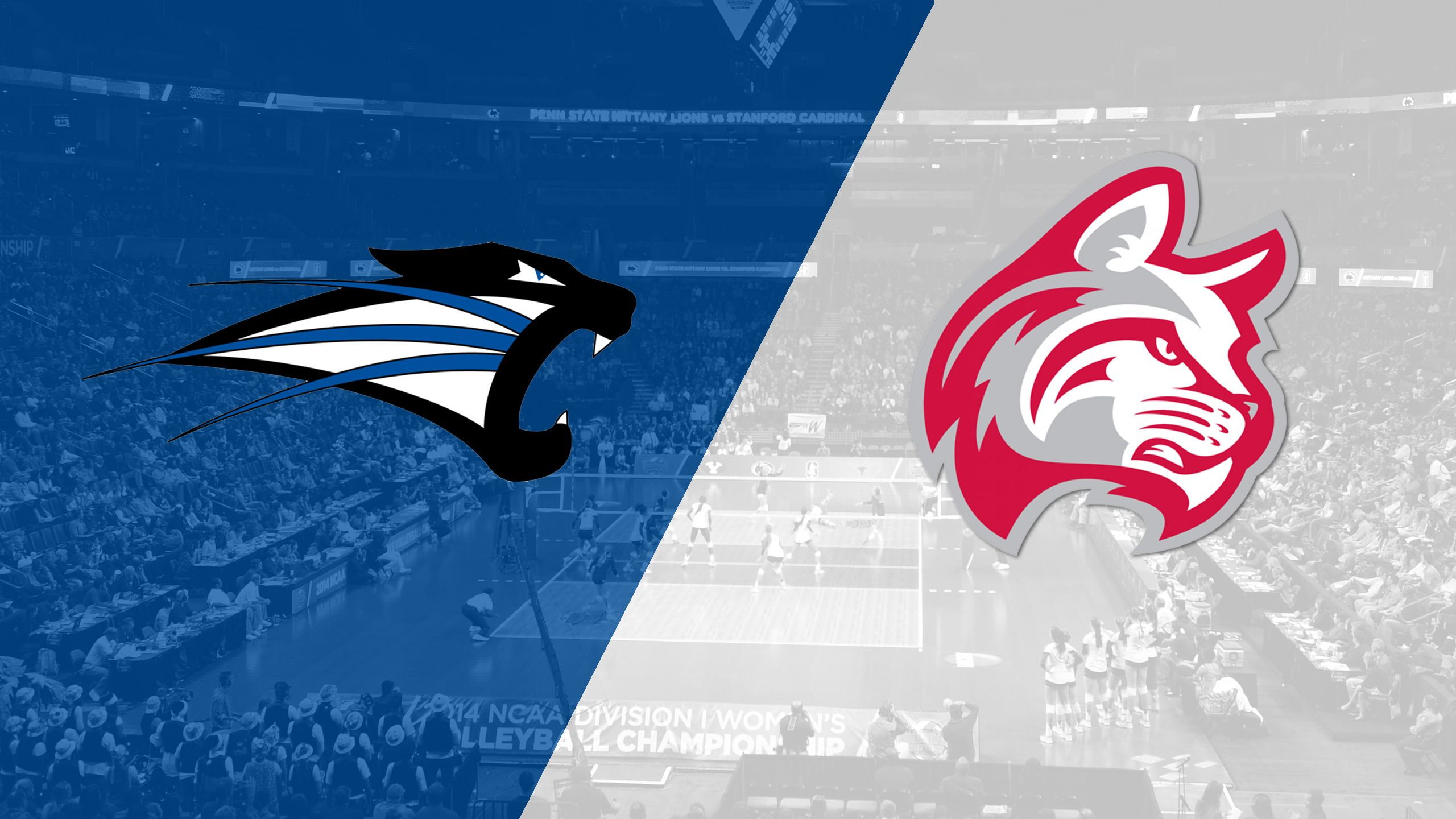 Saint Francis (IN) vs. Indiana Wesleyan (W Volleyball)