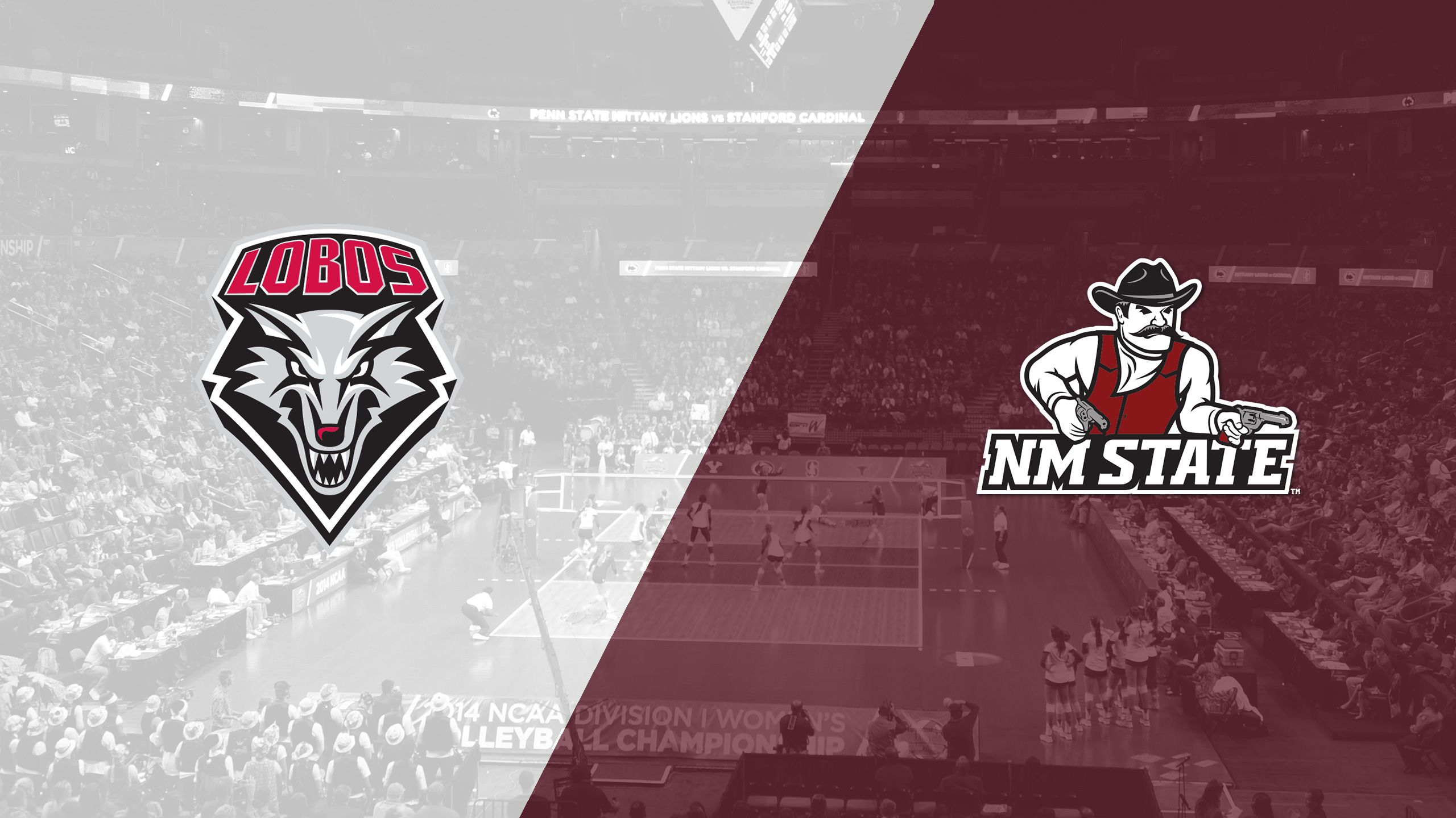 New Mexico vs. New Mexico State (W Volleyball)
