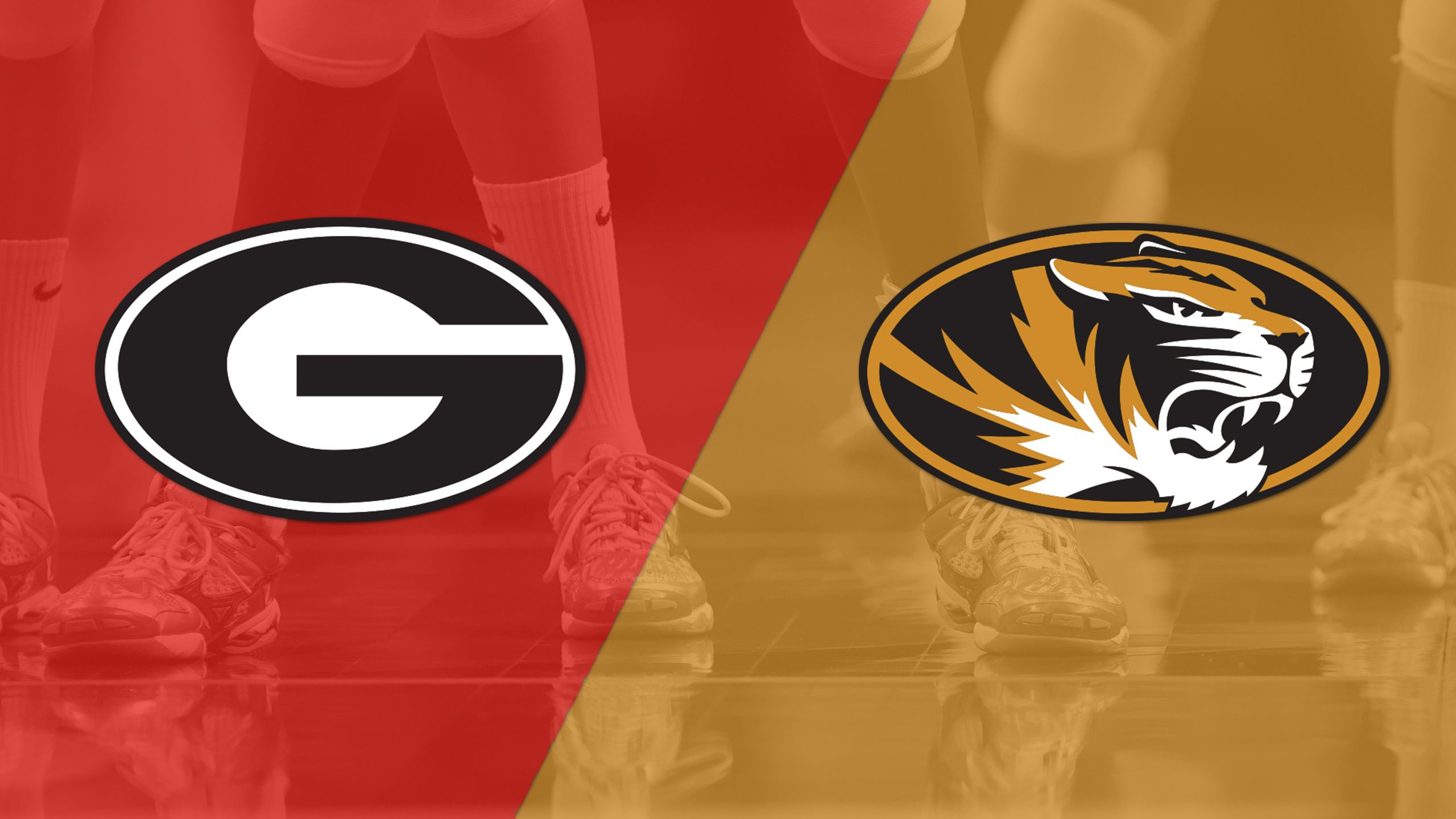 Georgia vs. Missouri (W Volleyball)