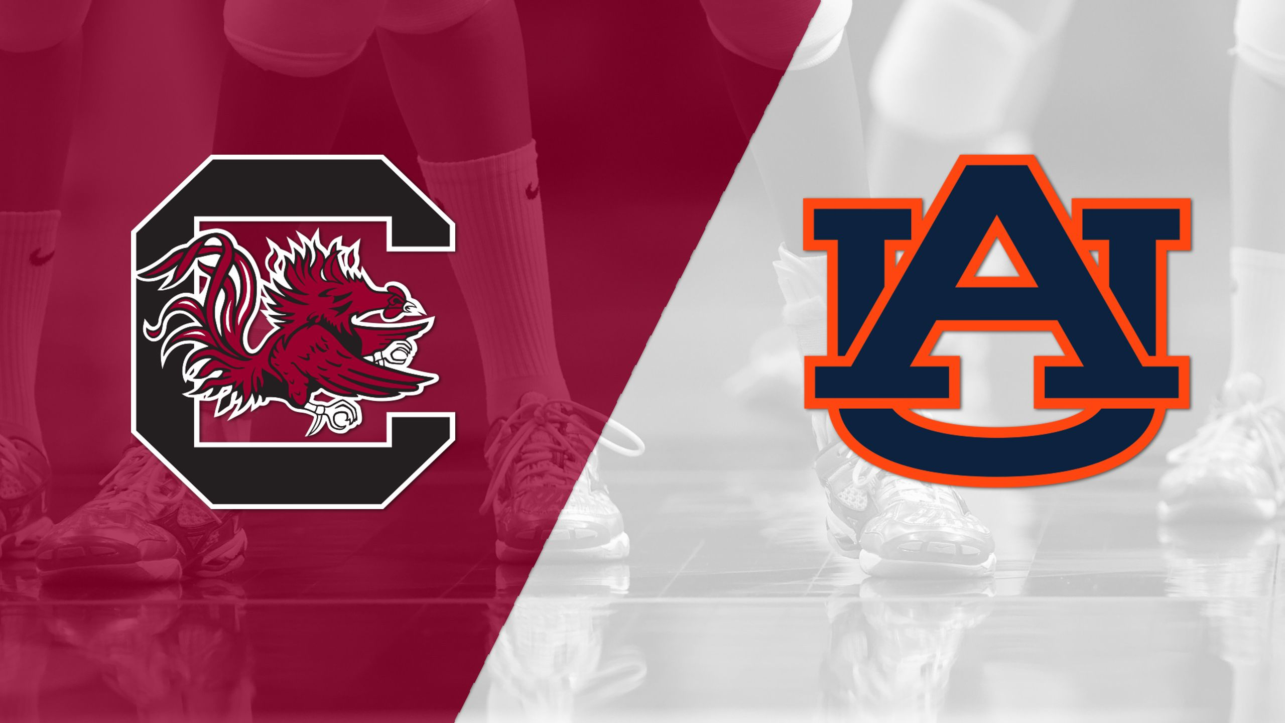 South Carolina vs. Auburn (W Volleyball) (re-air)