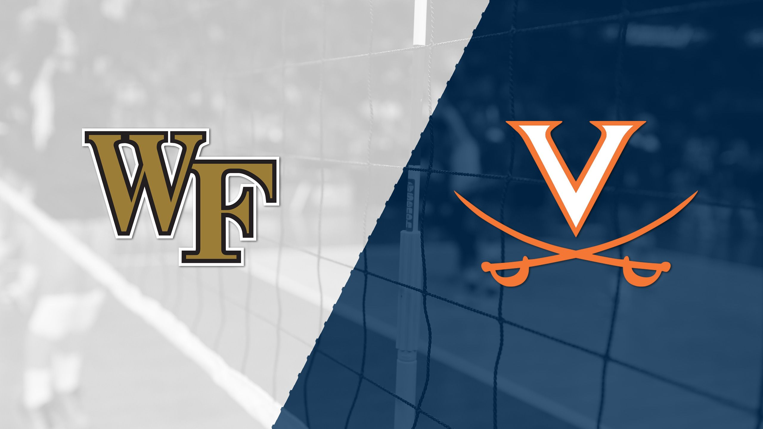 Wake Forest vs. Virginia (W Volleyball)