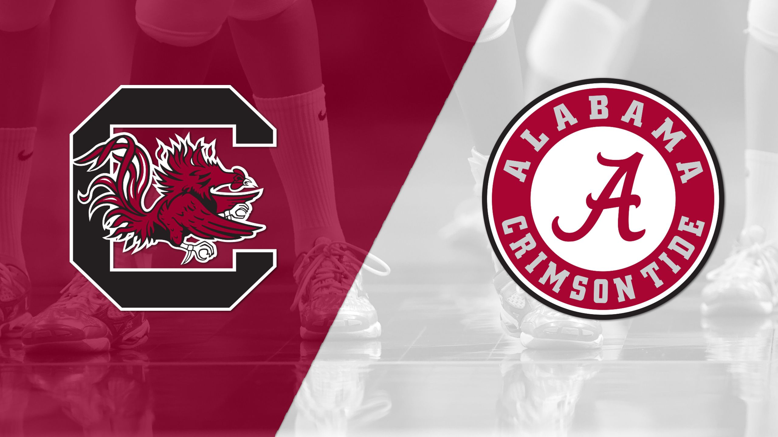 South Carolina vs. Alabama (W Volleyball)