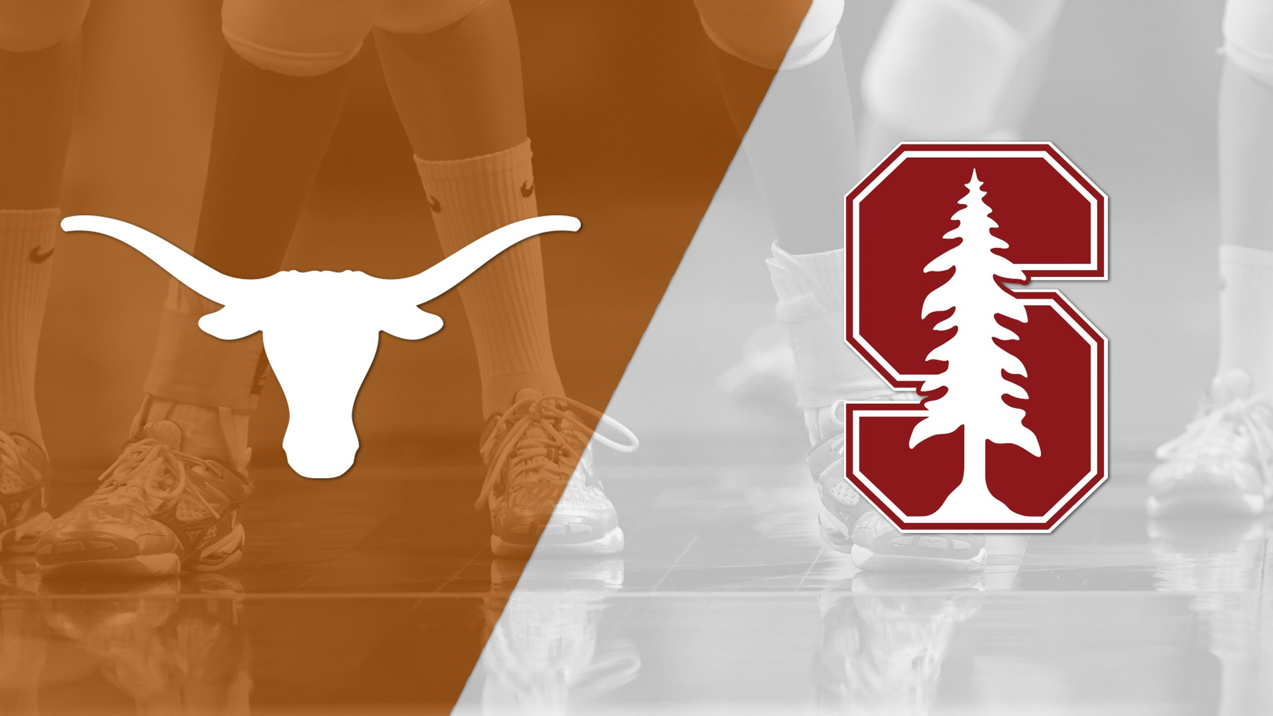 #6 Texas vs. #3 Stanford (Regional Final) (NCAA Division I Women's Volleyball Championship) (re-air)