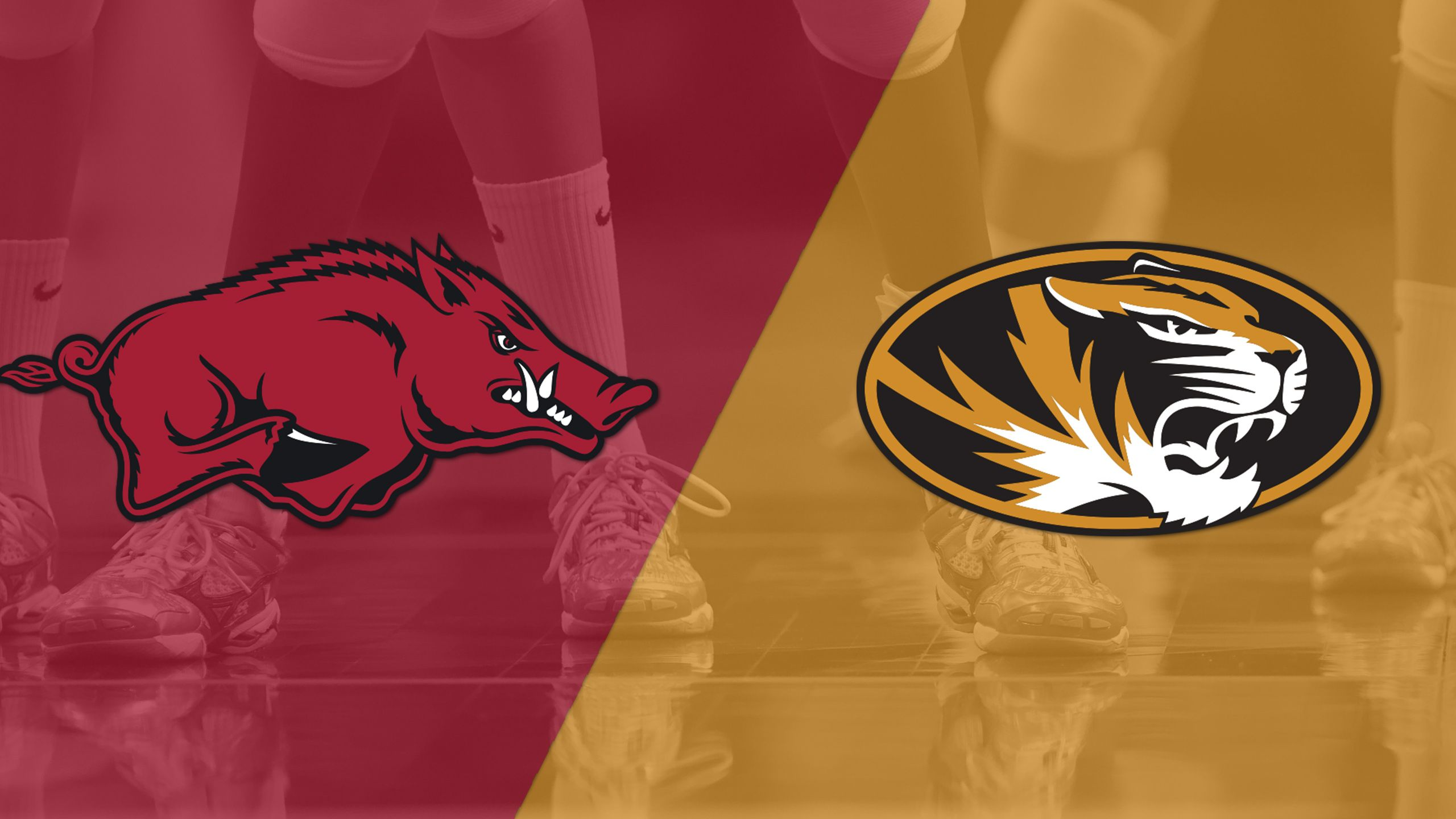 Arkansas vs. Missouri (W Volleyball)