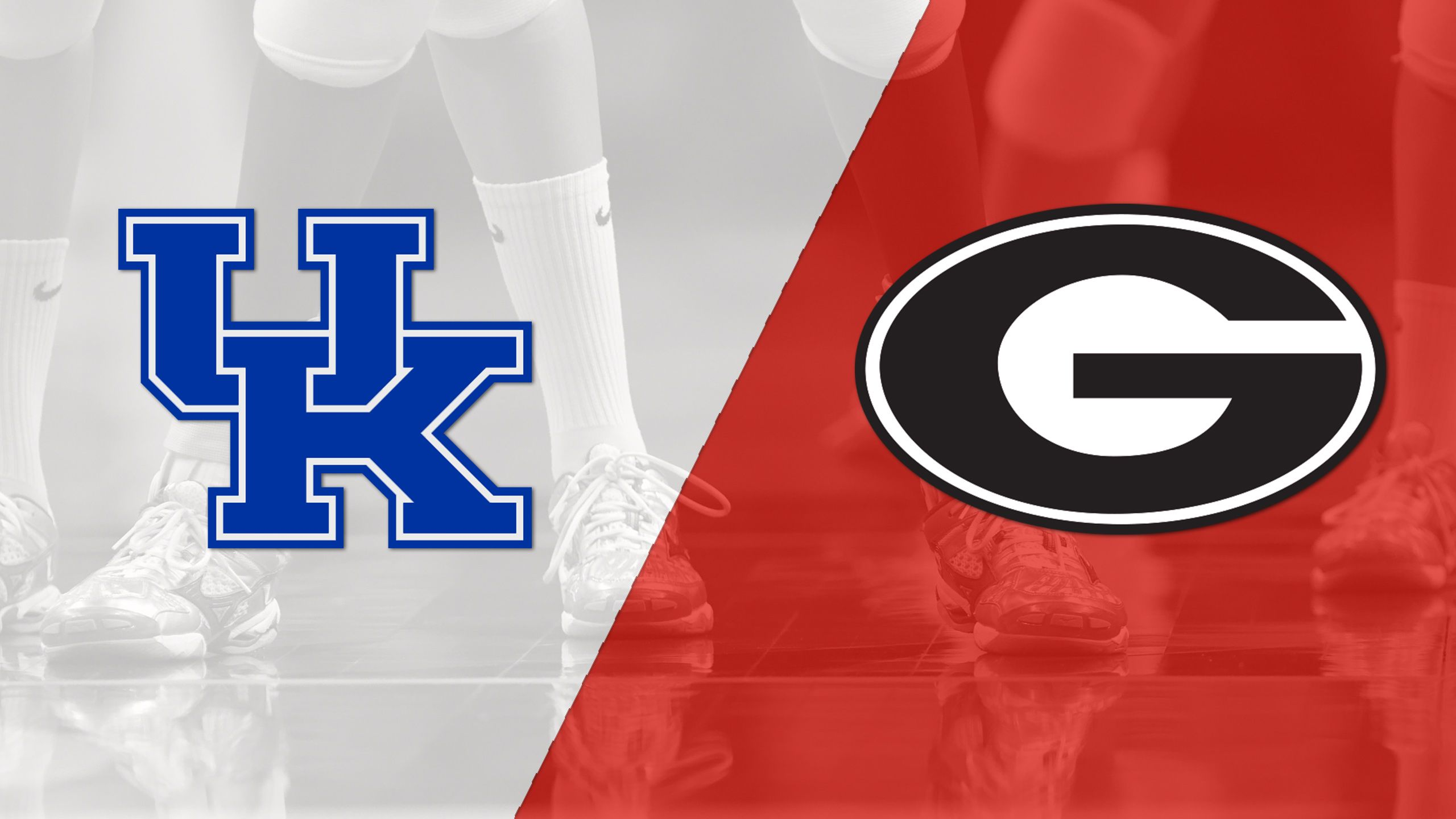 #6 Kentucky vs. Georgia (W Volleyball)