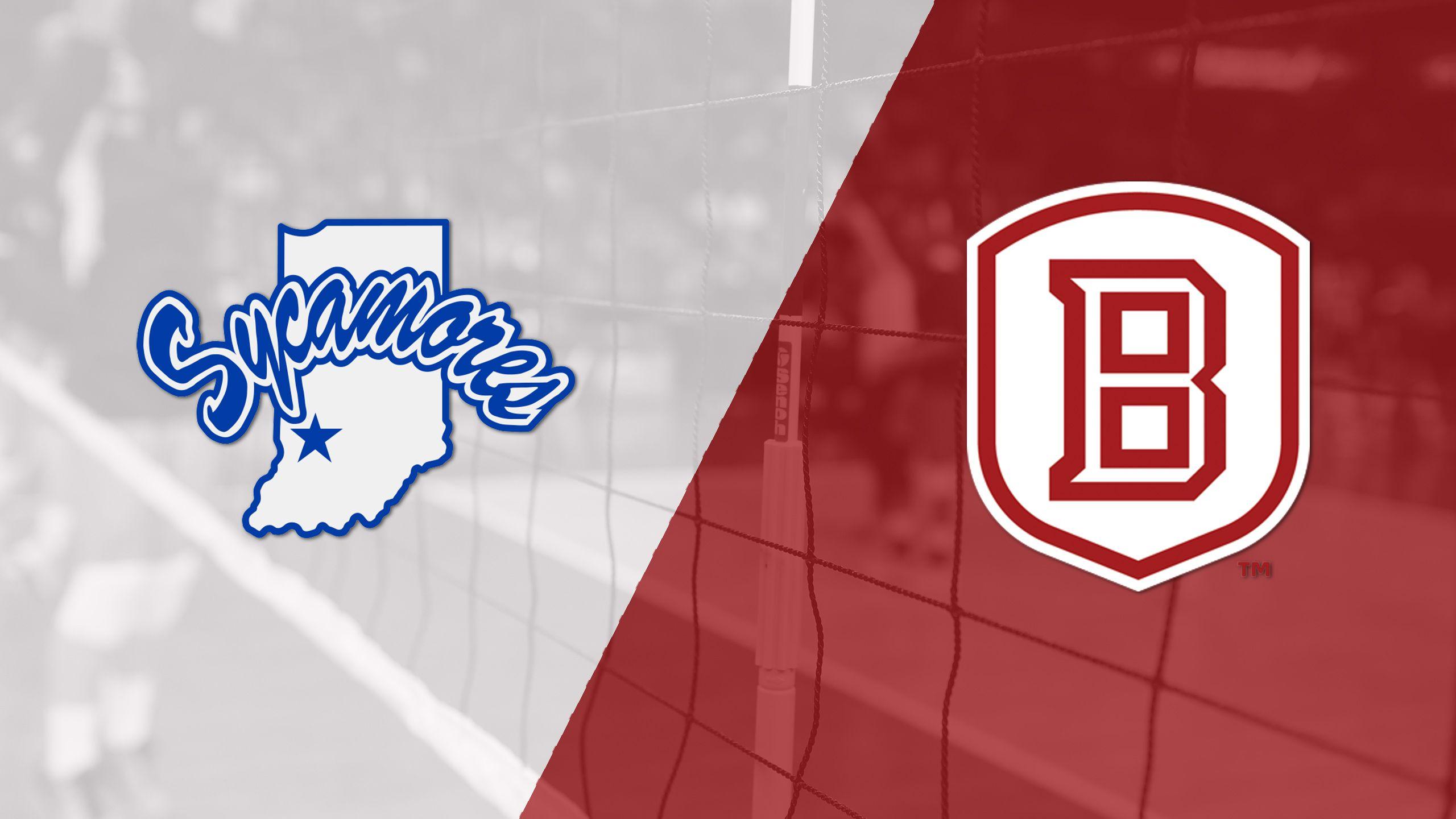 Indiana State vs. Bradley (W Volleyball)