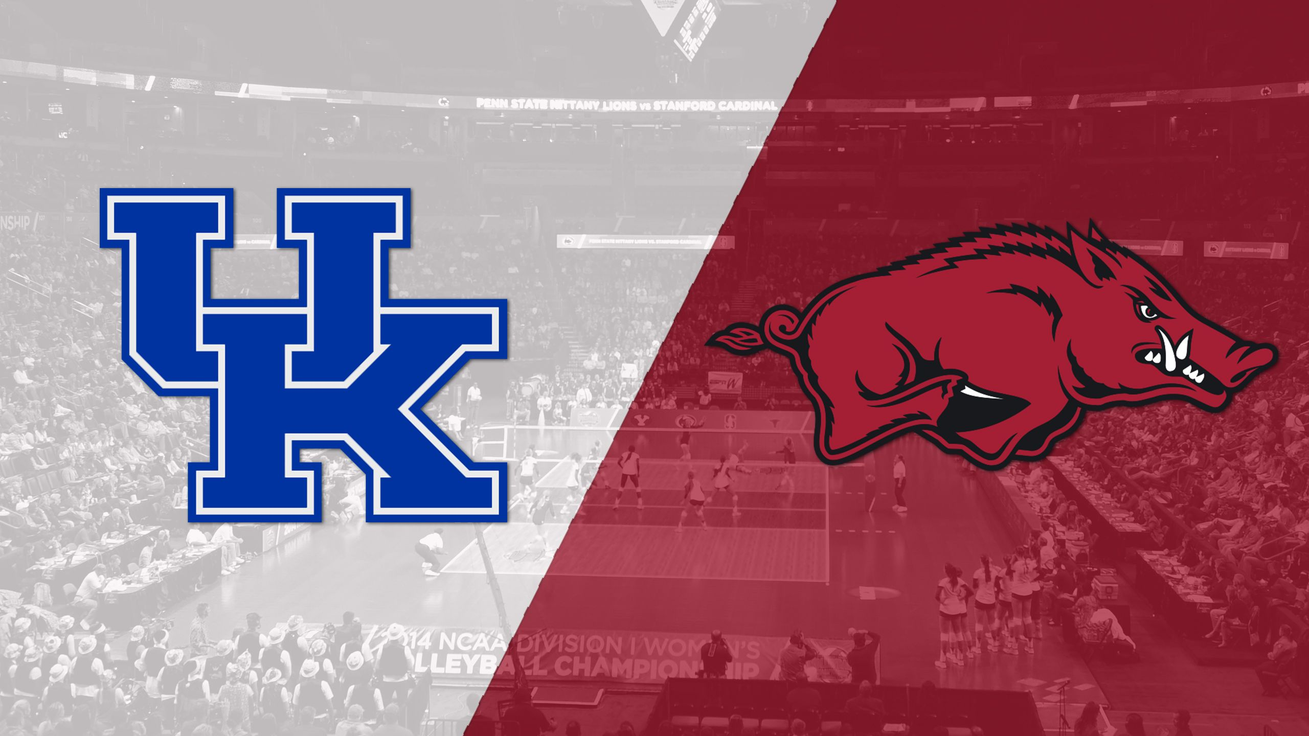 #6 Kentucky vs. Arkansas (W Volleyball)