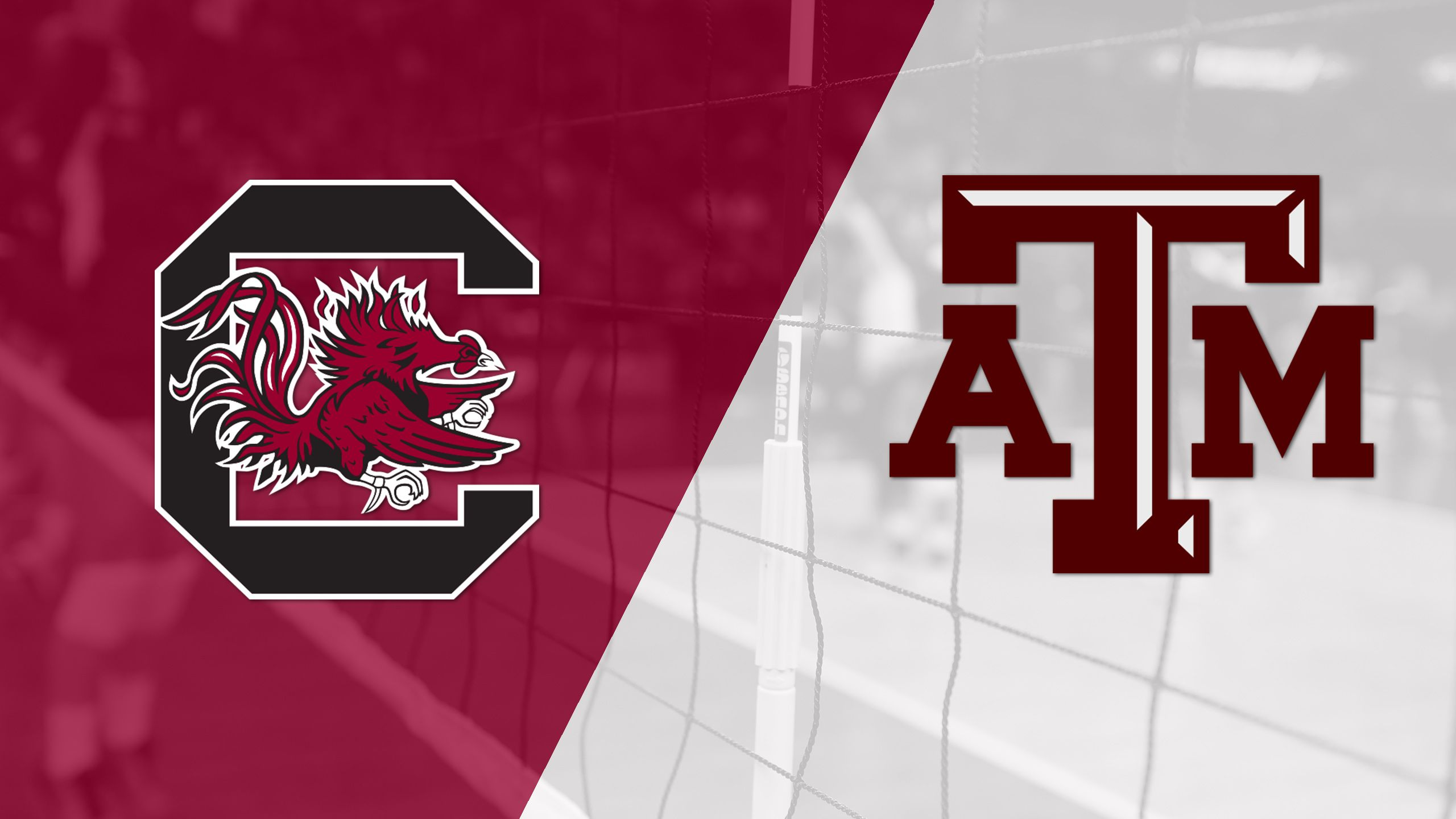 South Carolina vs. Texas A&M (W Volleyball)
