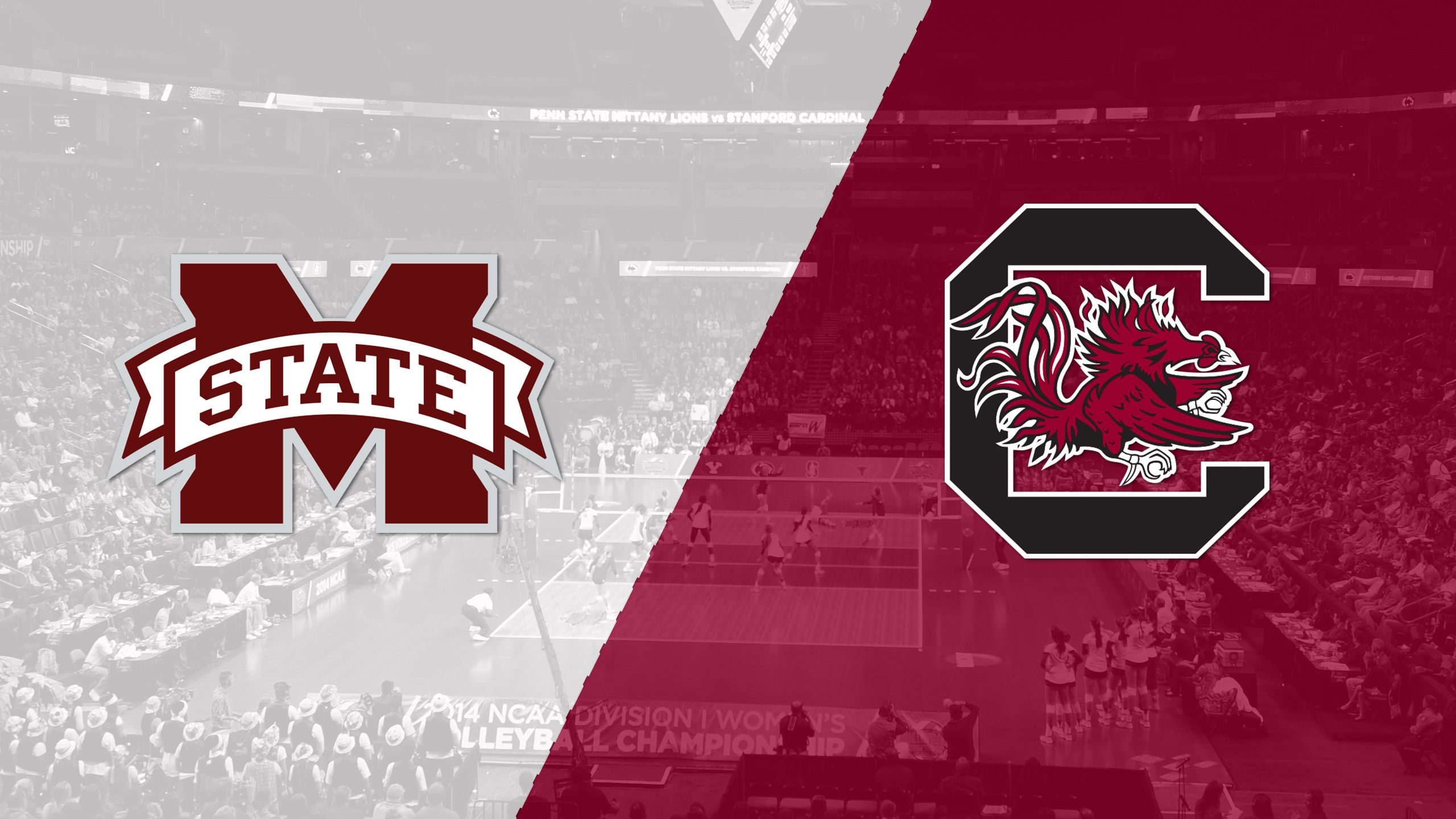 Mississippi State vs. South Carolina (W Volleyball)