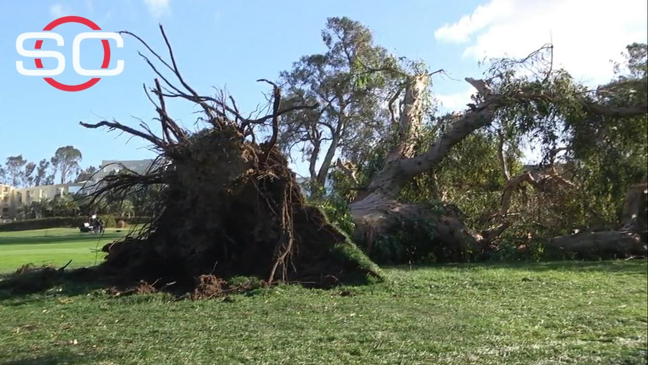 Storm downs trees at Torrey Pines - ESPN Video