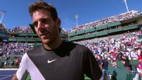 del Potro says he fought to beat Federer