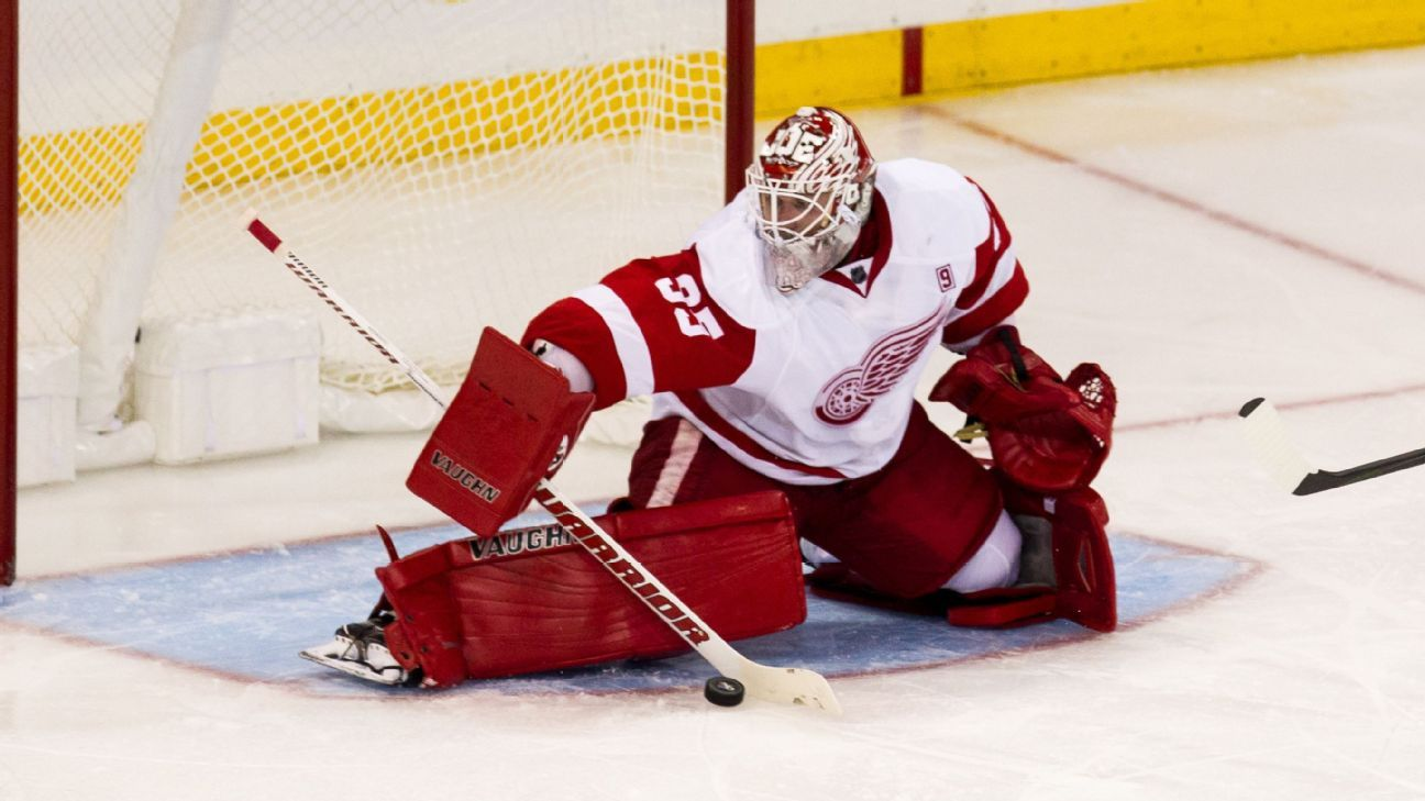 Will the Red Wings trade a goaltender?