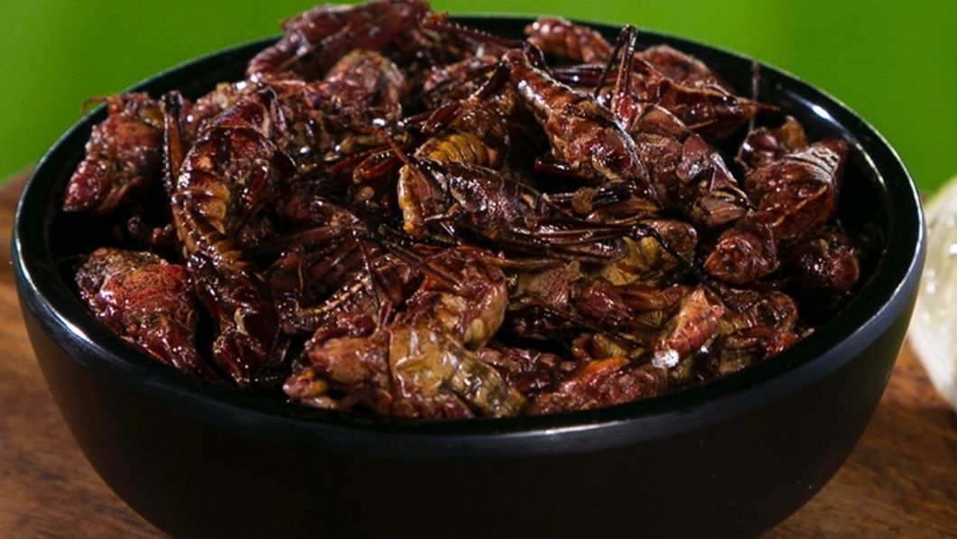 Seattle Mariners to serve toasted grasshoppers at Safeco Field
