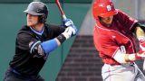 Duke vs. #9 North Carolina State (Baseball)