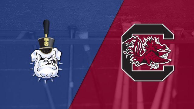 The Citadel vs. #13 South Carolina (Baseball)