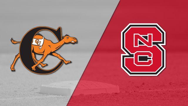 Campbell vs. NC State (Baseball)