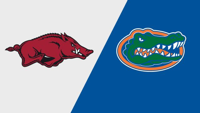 Alternate Cam Feed - Arkansas vs. Florida (Game 12) (College World Series)