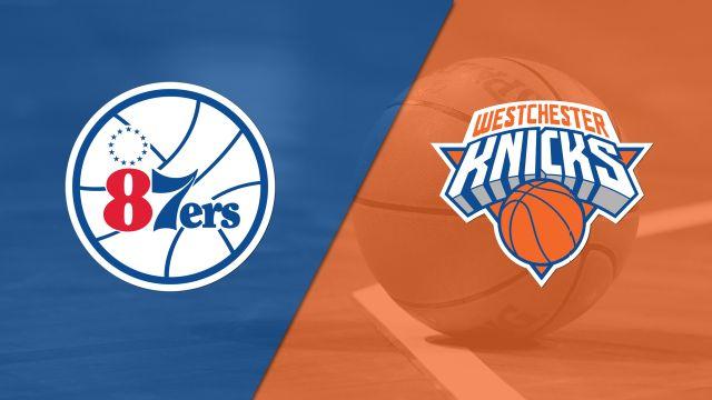 Delaware 87ers vs. Westchester Knicks