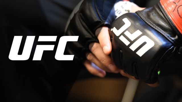 UFC 205: Official Press Conference