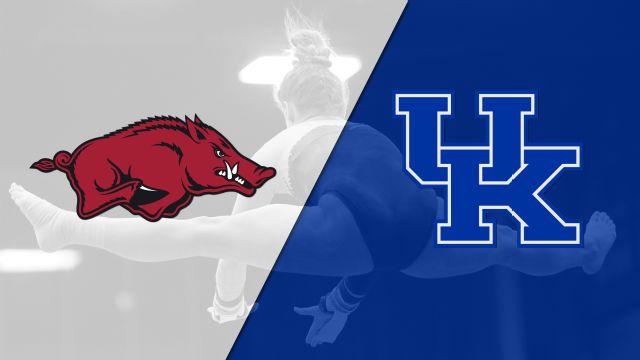 Arkansas vs. Kentucky (W Gymnastics)