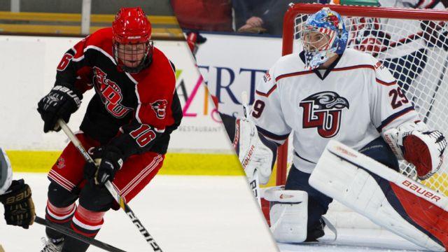 Davenport (MI) vs. Liberty (Club Hockey)