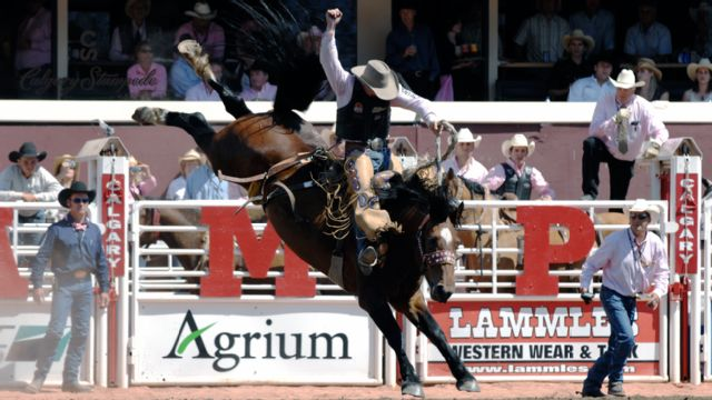 Calgary Stampede - Rodeo (Day 2)