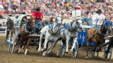 Calgary Stampede - Chuckwagon Racing (Day 2)
