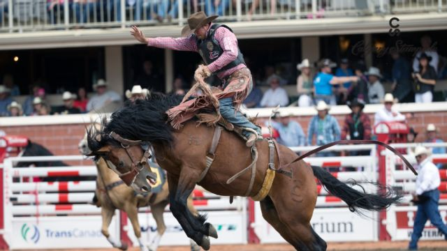 Calgary Stampede - Rodeo (Day 4)