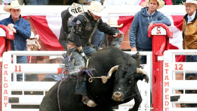 Calgary Stampede - Rodeo (Day 10)