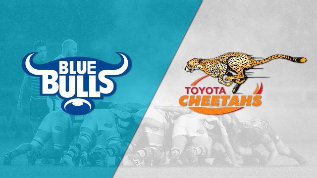 Blue Bulls vs. Free State Cheetahs (Final) (Currie Cup)