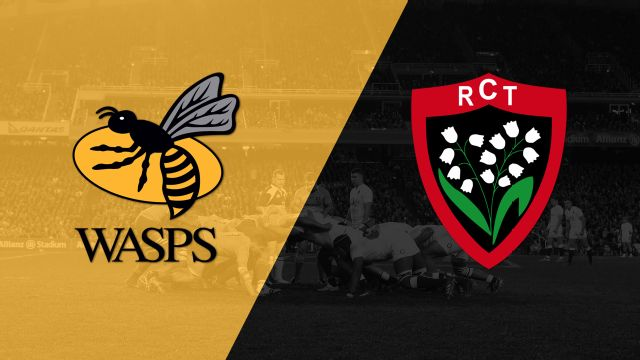 Wasps vs. Toulouse (Challenge Cup)