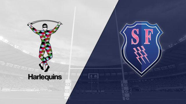 Harlequins vs. Stade Francais (European Challenge Cup)