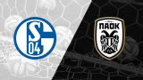 In Spanish - Schalke 04 vs. Paok FC (1/16 de Final) (UEFA Europa League)