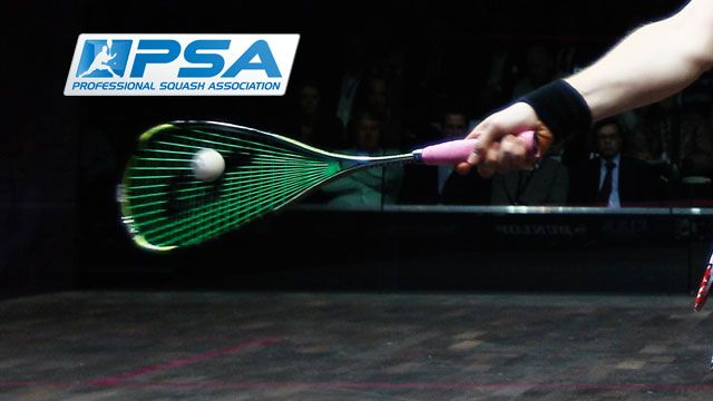 Psa World Series Finals (Final)