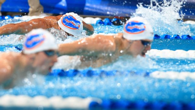 Tennessee vs. Florida (NCAA Swimming & Diving)
