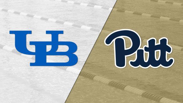 Buffalo vs. Pittsburgh (Swimming)