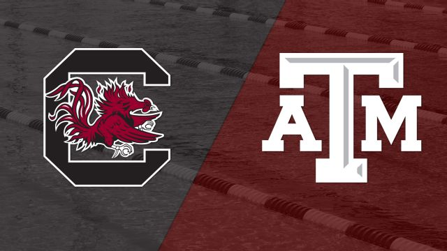 South Carolina vs. Texas A&M (Swimming)