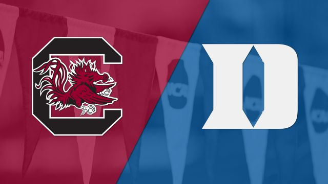 South Carolina vs. Duke (Swimming)