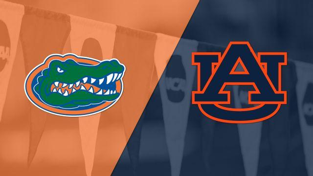 Florida vs. Auburn (Swimming)