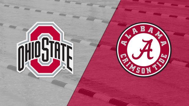 Ohio State vs. Alabama (Swimming & Diving)
