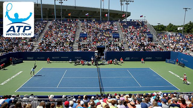 2014 Emirates Airline US Open Series - Winston-Salem Open (Quarterfinals)