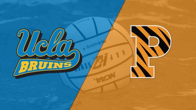 UCLA vs. Princeton (Water Polo)
