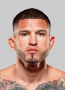 Anthony Pettis