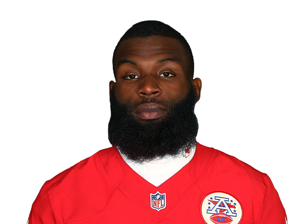 Mike Williams Stats, News, Videos, Highlights, Pictures, Bio - Tampa