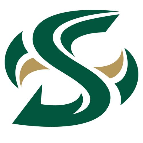Sacramento St Hornets