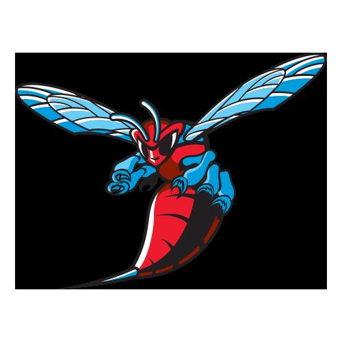 Delaware St Hornets