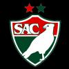 Salgueiro Logo