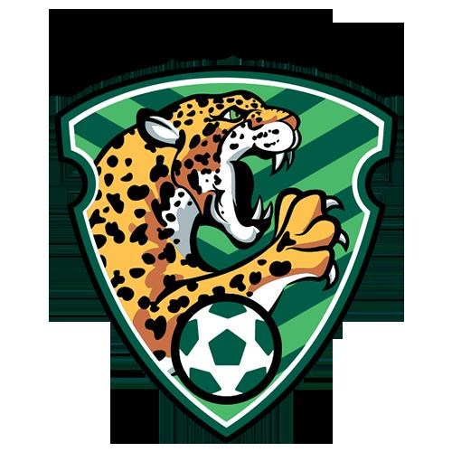 Tigres, Campeón En La Cancha Y En La Tribuna