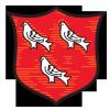 Dundalk Logo