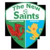 T.N.S. Logo